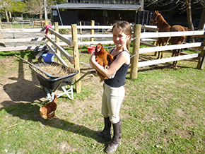 Nelson NZ Farm Visit