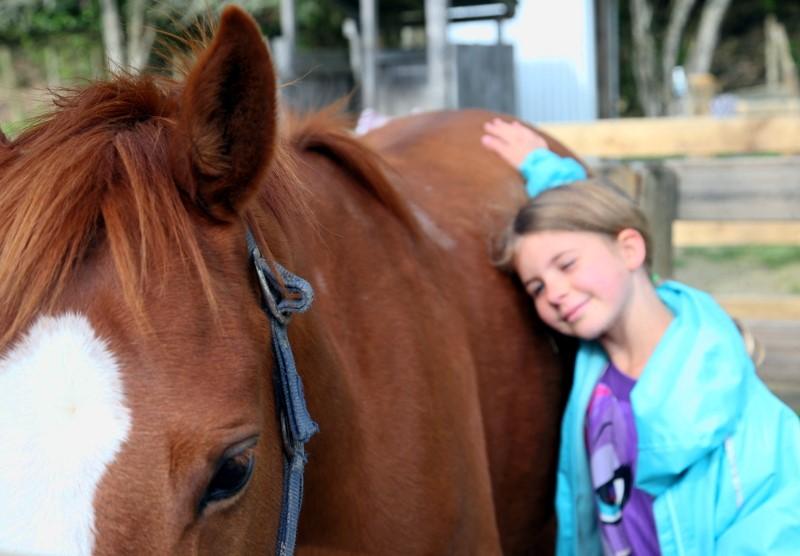 Pony Dreaming